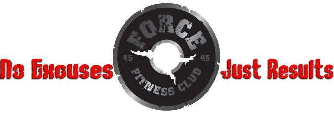 2013_Force_Logo.jpg